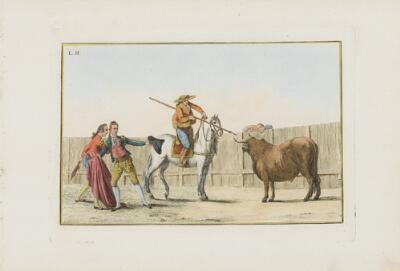 Collection of Principal Moves in a Bullfight: Awaiting the Halted Bull